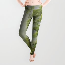 Country Path Leggings