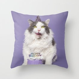 Happy Birthday Fat Cat In Party Hat With Cake Throw Pillow