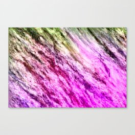 there is unrest in the forest... Canvas Print