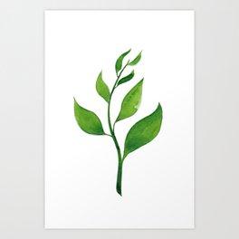 Tea Leaves Art Print