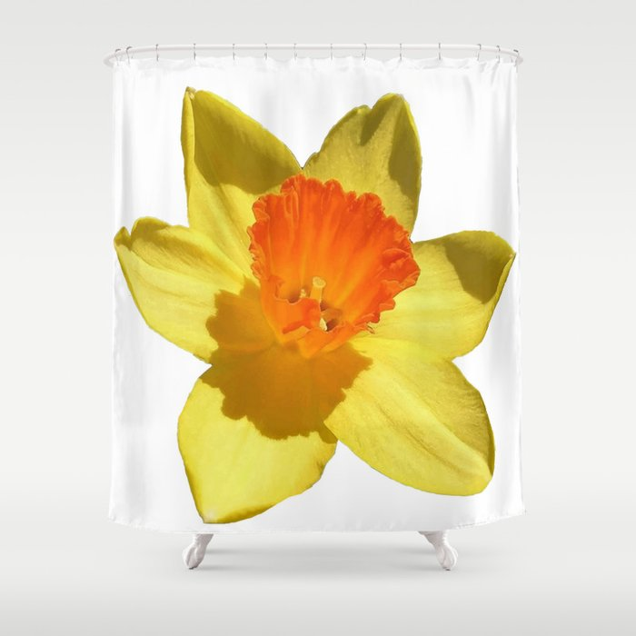Daffodil Emblem Isolated On White Shower Curtain