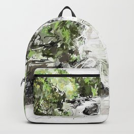 Abstract falls Backpack