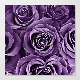 Rose Bouquet in Purple Canvas Print