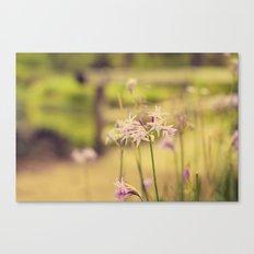 Tiny purple flowers Canvas Print