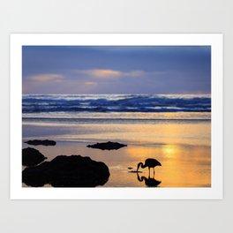 A Great Blue Heron Feeding at Sunset Art Print