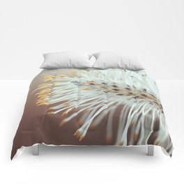Catkin Comforters