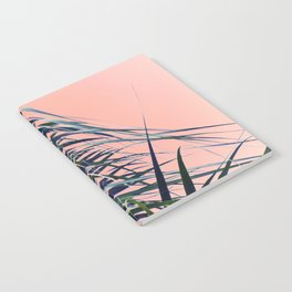 Feather Palm Notebook