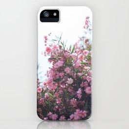 Pink Mediterranean Flowers iPhone Case