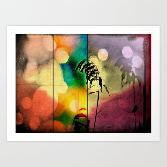 Rainbow Grass Diamond Art Print