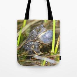 Toad with bulging throat Tote Bag
