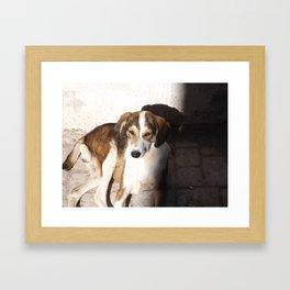 Shoo Framed Art Print