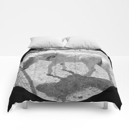 Cute young miniature horse Comforters
