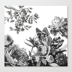 botanical_vintage Canvas Print