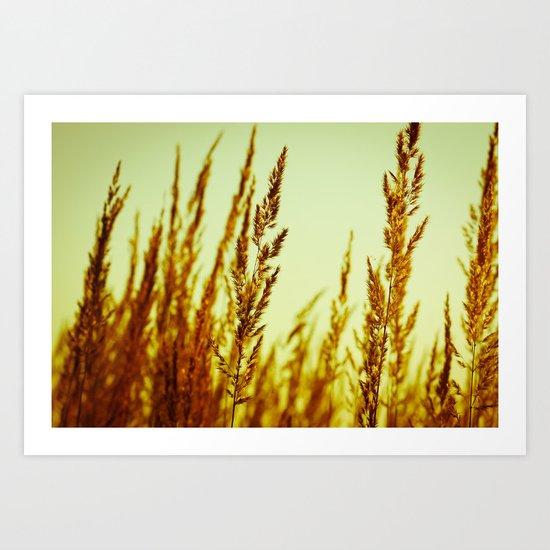 whispering grasses I Art Print