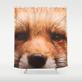 Red fox 2 Shower Curtain