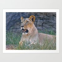 Ferocious Lioness Art Print