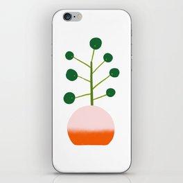 Chinese Money Plant iPhone Skin
