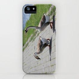 Bigs birds 2 iPhone Case