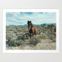 Nevada Desert Horse Art Print
