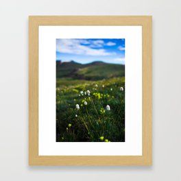 Mt. Bierstadt 'Little Colors' Framed Art Print