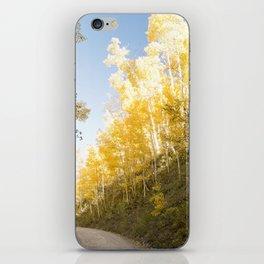 Mountain Trail iPhone Skin