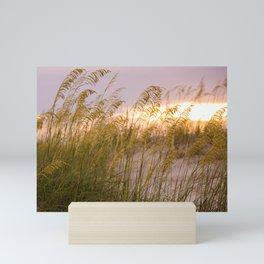 Sea grass in the sunset Mini Art Print
