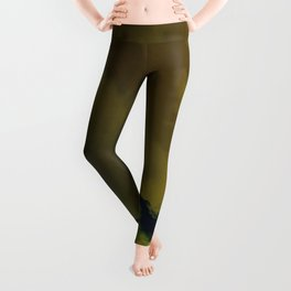 Untitled Abstract Sky Leggings
