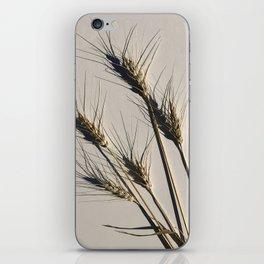 prairie wheat iPhone Skin