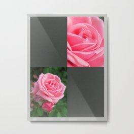 Pink Roses in Anzures 2 Blank Q6F0 Metal Print