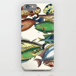 Illustrated Pacific Ocean Exotic Game Fish Identification Chart iPhone Case