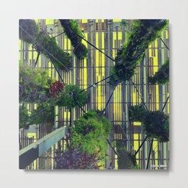Miami urban trees Metal Print