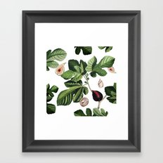 Figs White Framed Art Print