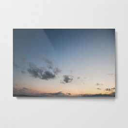 The One That Fell Metal Print