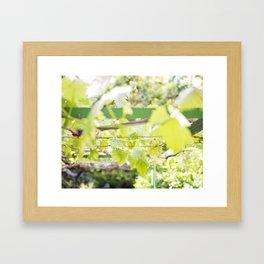 Under the Arbor Framed Art Print