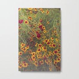 Summer Garden Flower Photography Metal Print