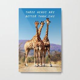 Three Giraffes Standing Together On African Plain Metal Print