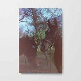 Horses in Bidwell Park Metal Print