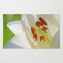 White Lily (Digital Art) Rug