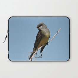 A Cassin's Kingbird Scopes the Skies for Flies Laptop Sleeve