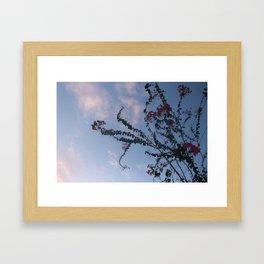 Skyline Euphoria Framed Art Print