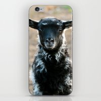 lamb iPhone & iPod Skins featuring Lamb by hyycam