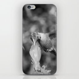 Hummingbird and the Flower- Black and White iPhone Skin