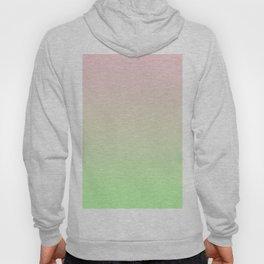 Pastel Ombre Millennial Pink Green Gradient Pattern Hoody