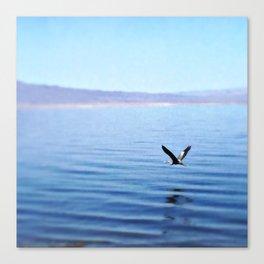 Salton Sea, 2016 (Great Blue Heron) Canvas Print