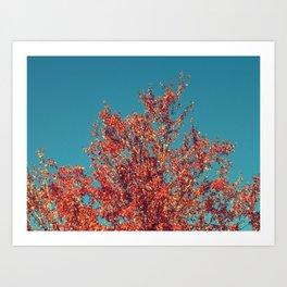 Autumn Tree Teal Sky Art Print