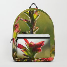 Oklahoma Wildflower Backpack