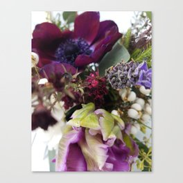 The Shy Anemone and the Brave Tulip Canvas Print