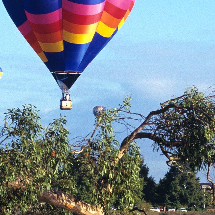 Hot air balloon scene Leggings
