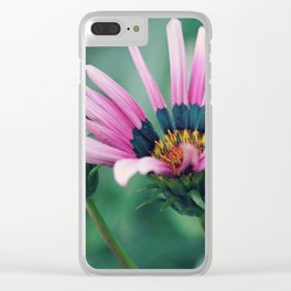 Gazania and Bud Clear iPhone Case