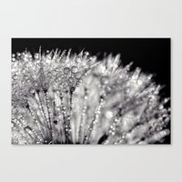 silver Canvas Prints featuring silver by Bonnie Jakobsen-Martin